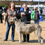 New GCH with BOB in Brookesville